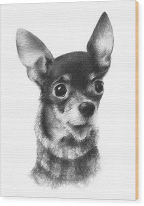 Chihuahua Pup Wood Print by Natasha Denger