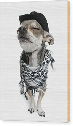 Chihuahua Wearing A Scarf And A Cowboy Hat Wood Print by Life On White