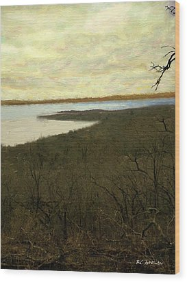 Chill Spring Wood Print by RC deWinter