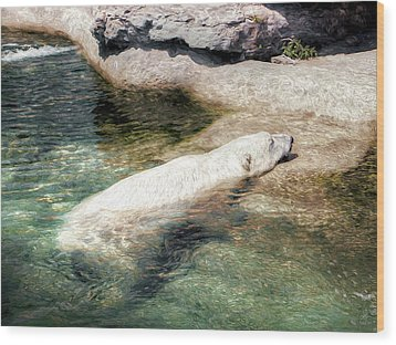 Wood Print featuring the photograph Chillin' Polar Bear by Pennie  McCracken