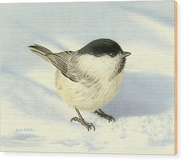 Chilly Chickadee Wood Print by Sarah Batalka
