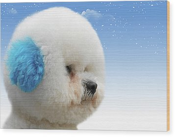 China's Latest Craze - Dyeing Pets Wood Print by Christine Till