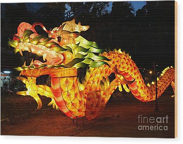 Wood Print featuring the photograph Chinese Lantern In The Shape Of A Dragon by Yali Shi