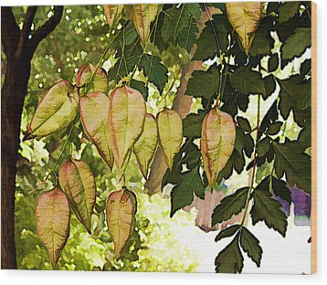 Chinese Lanterns Wood Print by Paul Cutright