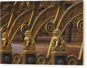 Chinese Lions - Luck Prosperity Power Grandeur Wood Print by Christine Till
