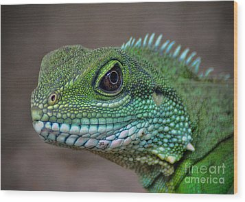 Chinese Water Dragon Wood Print