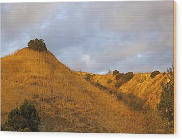 Wood Print featuring the photograph Chino Hills And Clouds by Viktor Savchenko