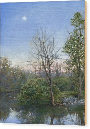 Chittenango Creek- Dusk Wood Print by Wayne Daniels