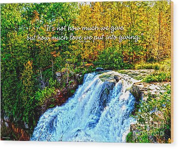 Wood Print featuring the photograph Chittenango Falls, Ny Mother Teresa  by Diane E Berry