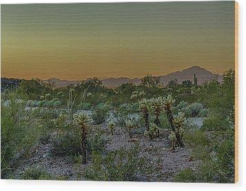 Cholla Desert Sunset Wood Print