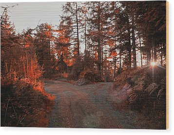 Choose The Road Less Travelled Wood Print