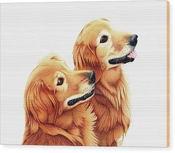 Chris And Riggs Wood Print by Danielle R T Haney