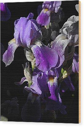 Chris' Garden - Purple Iris 1 Wood Print by Stuart Turnbull