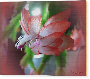 Christmas Cactus Wood Print by EricaMaxine  Price