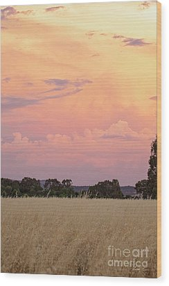Wood Print featuring the photograph Christmas Eve In Australia by Linda Lees
