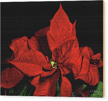 Christmas Fire Wood Print by Christopher Holmes