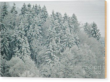 Wood Print featuring the photograph Christmas Forest - Winter In Switzerland by Susanne Van Hulst