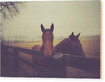 Wood Print featuring the photograph Christmas Horses by Shane Holsclaw