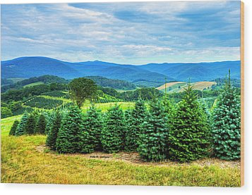 Christmas Spirit Wood Print by Dale R Carlson
