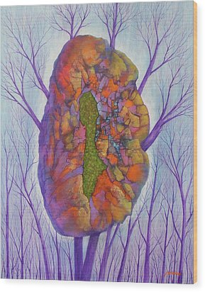 Chrysalis Wood Print by J W Kelly