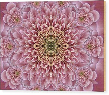 Chrysanthemum Beauty Wood Print