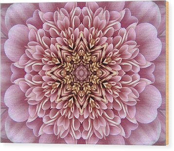 Chrysanthemum Kaleidoscope Wood Print