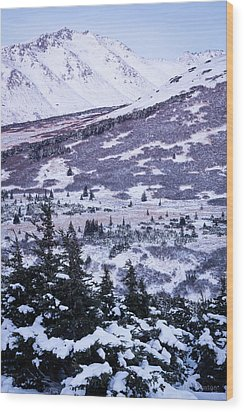 Chugach In Alpenglow Wood Print
