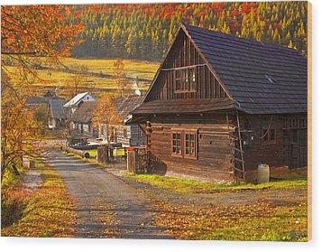 Cicmany -old Village  In Slovakia Wood Print by Renata Vogl