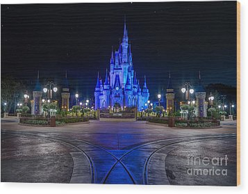 Cinderellas Castle Glow Wood Print