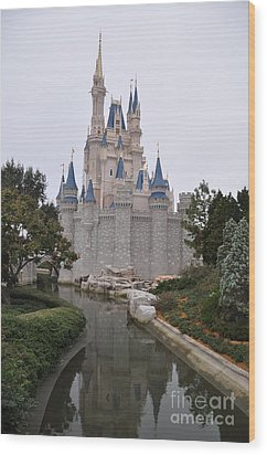 Cinderellas Castle Wood Print by John Black