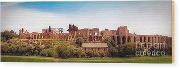 Circo Massimo Panoramic Wood Print by Sue Melvin