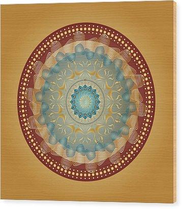 Circularity No 1640 Wood Print by Alan Bennington