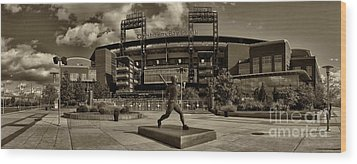 Citizens Park Panoramic Wood Print by Jack Paolini