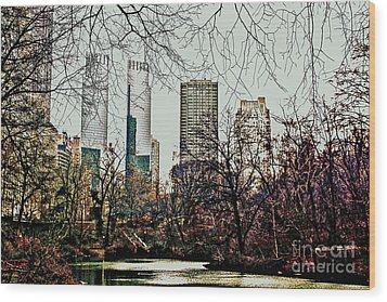 City View From Park Wood Print