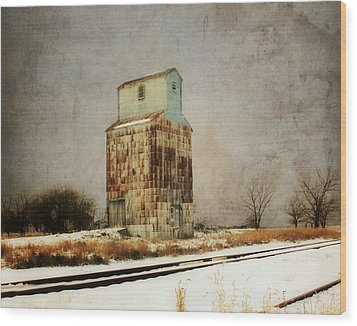 Wood Print featuring the photograph Clare Elevator by Julie Hamilton