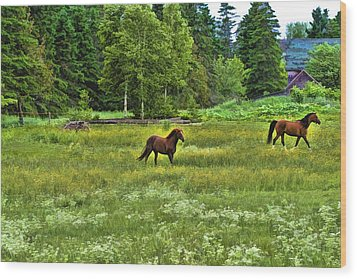 Wood Print featuring the photograph Classic Country by Gary Smith