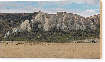 Wood Print featuring the photograph Clay Cliffs Omarama by Gary Eason
