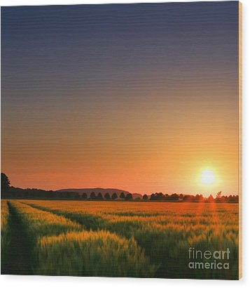 Wood Print featuring the photograph Clear Sunset by Franziskus Pfleghart