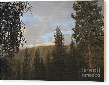 Clearing Rain And Rainbow Wood Print by Edward R Wisell