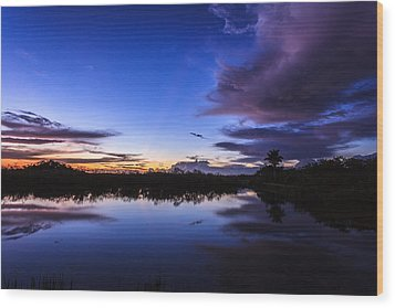 Clearing Storm Over The Anhinga Trail Wood Print by Jonathan Gewirtz
