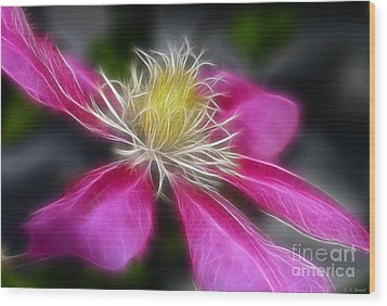 Clematis In Pink Wood Print by Deborah Benoit