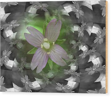 Wood Print featuring the photograph Clematis by Keith Elliott