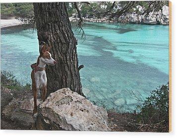 Cleopatra In A Turquoise Paradise Wood Print by Pedro Cardona Llambias
