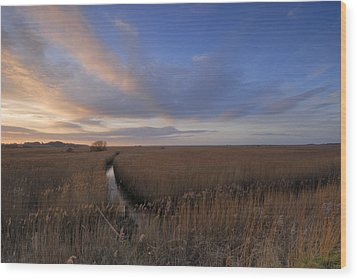 Cley Marshes  Wood Print by Liz Pinchen