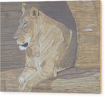 Cliff Dweller Wood Print by Anita Putman