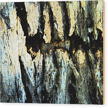 Wood Print featuring the photograph Cliff Dwellings by Lenore Senior