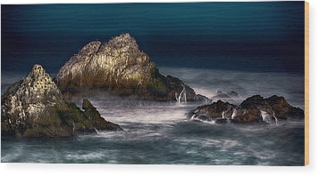 Wood Print featuring the photograph Cliff House San Francisco Seal Rock by Steve Siri