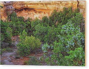 Cliff Palace At Mesa Verde National Park - Colorado Wood Print by Jason Politte