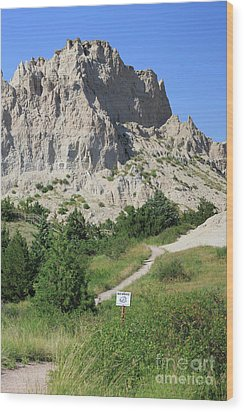 Cliff Shelf Trail In Badlands National Park South Dakota Wood Print by Louise Heusinkveld