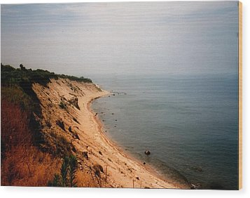 Cliffs Of Block Island Wood Print